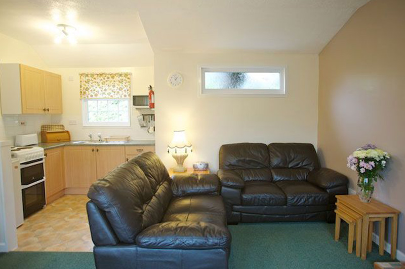 sofa front room lounge flowers kitchen open plan lodge