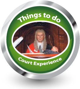 things to do judge icon
